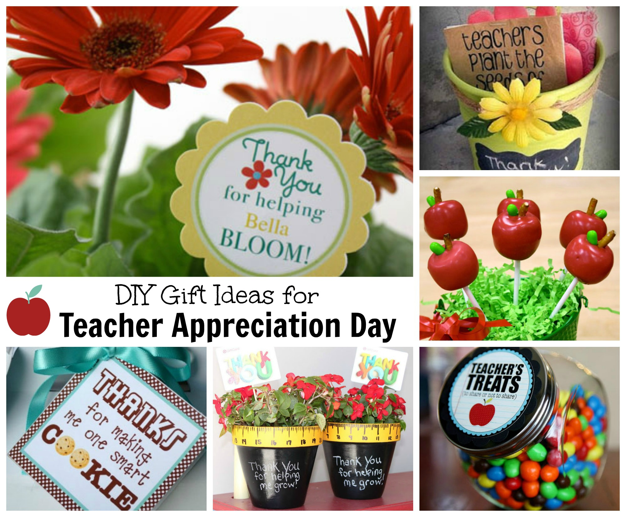 Teacher Appreciation Day Gift Ideas